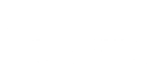 Equinetic Horse Supplements