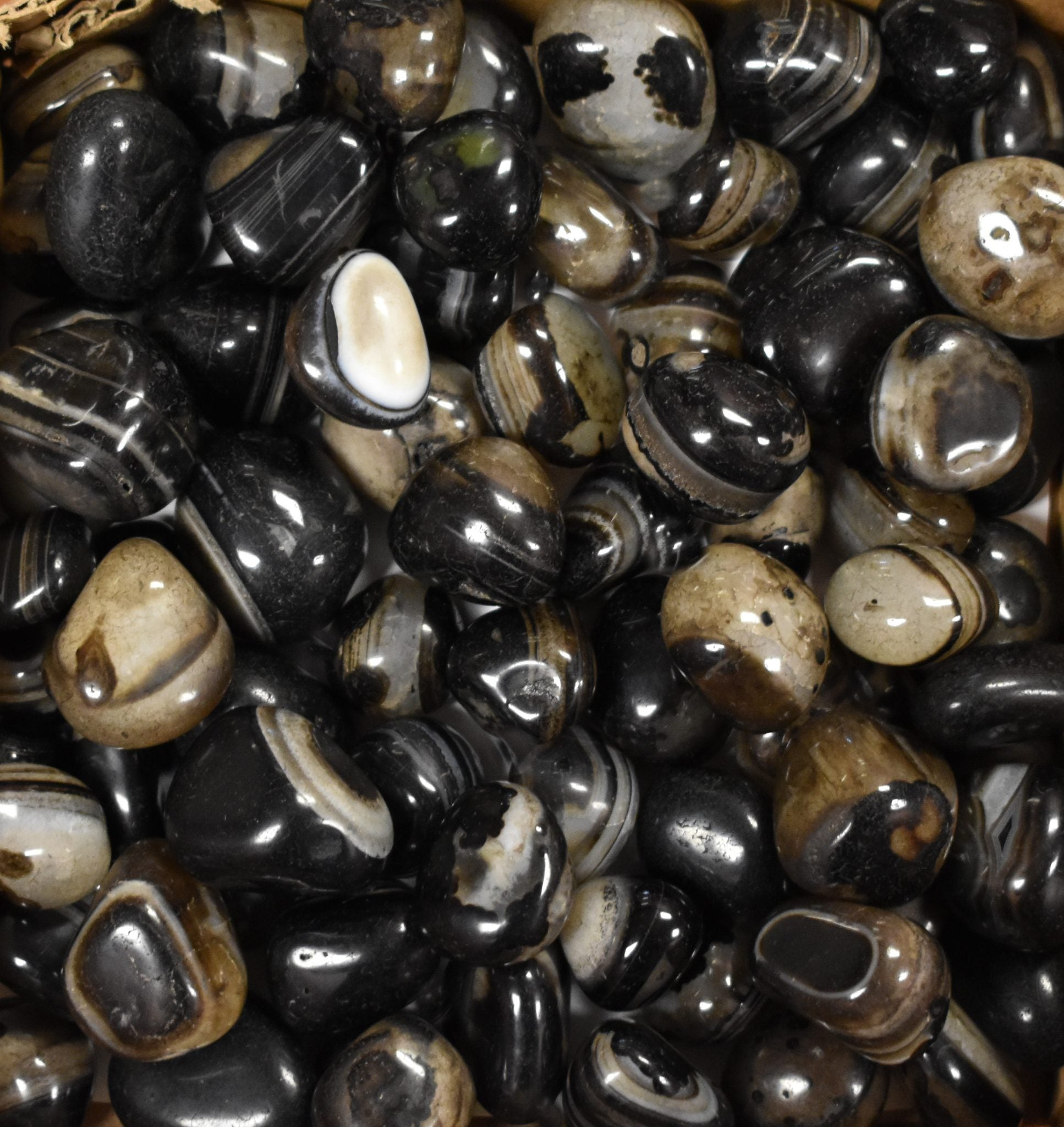 Black Onyx Exotic Pebbles