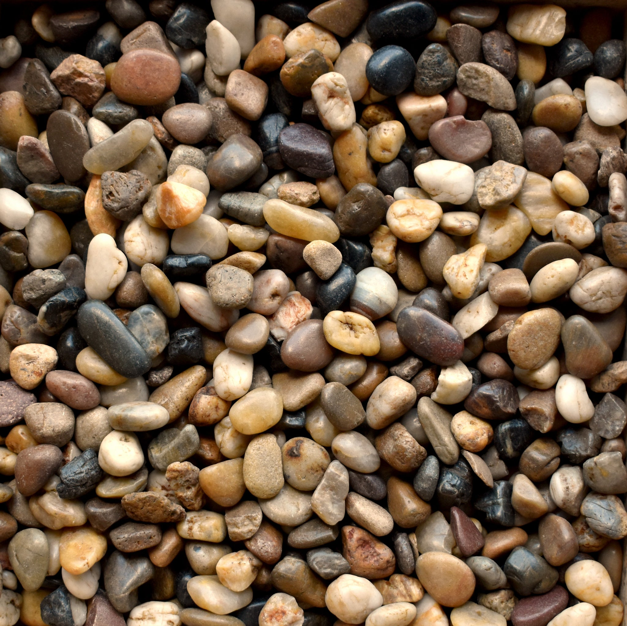 Polished Pebble - Mixed ½ - ¾""