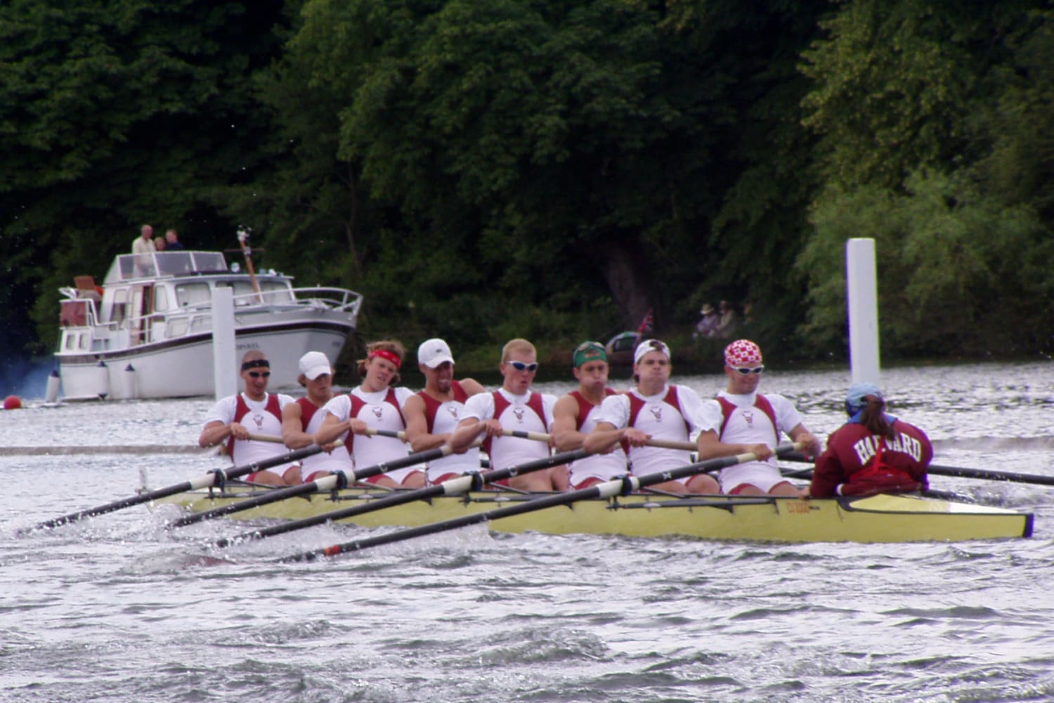 Image result for college rowing