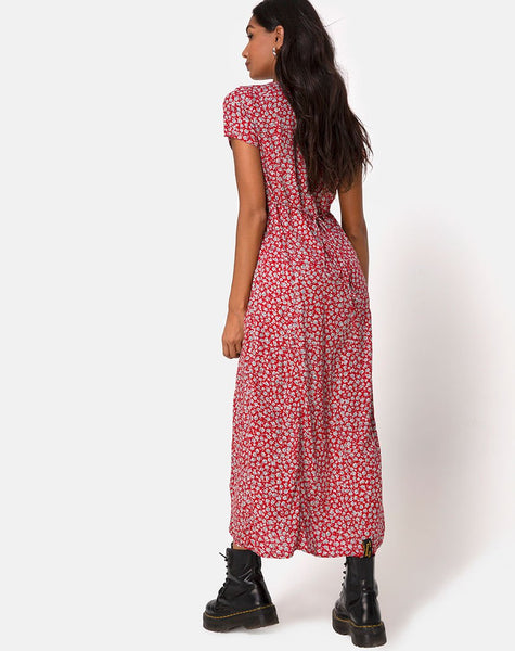 Sanrin Dress in Ditsy Rose Red Silver by Motel