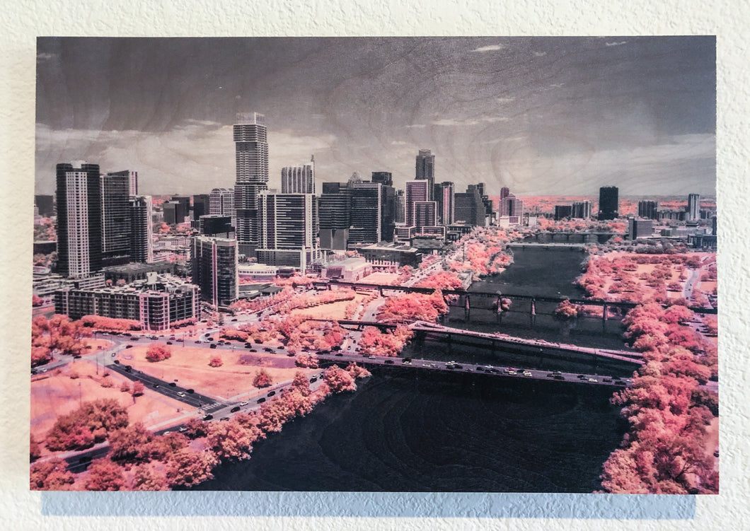 Austin in Pink on wood 12