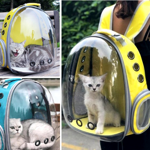 Pet Capsule Backpack - Carry Cat In Backpack