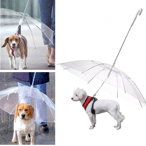 The Best Dog Umbrella