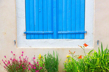 909-provence-window-flowers-france-909.jpg