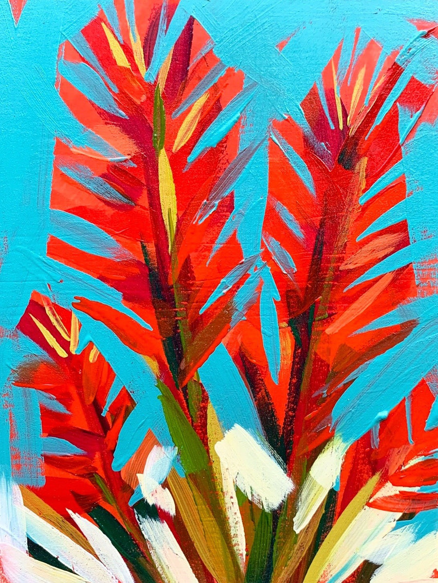 Indian Paintbrush III