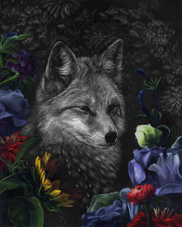 Halcyon Fox - Original Scratchboard
