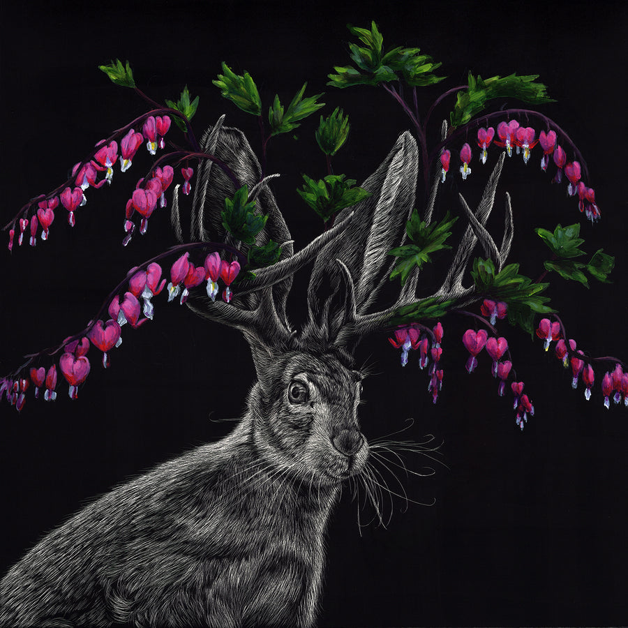 Bleeding Heart Jackalope