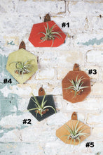 Leather Air Plant Wall Hanger -Gemstone Shapes - 5 Pack