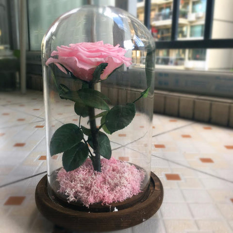 Romantic Preserved Pink Rose - Looker Gifts