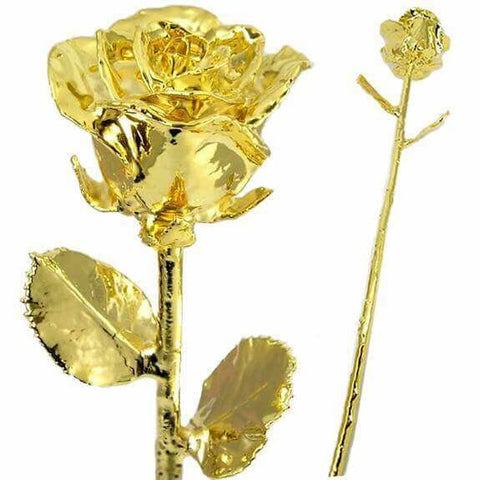 Gold Dipped Rose - Looker Gifts