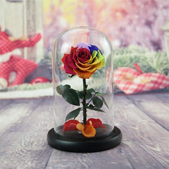 Enchanted Preserved Roses