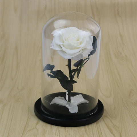 Enchanted Preserved Roses - Looker Gifts