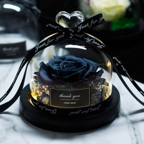 Preserved Rose in Glass Dome - Looker Gifts