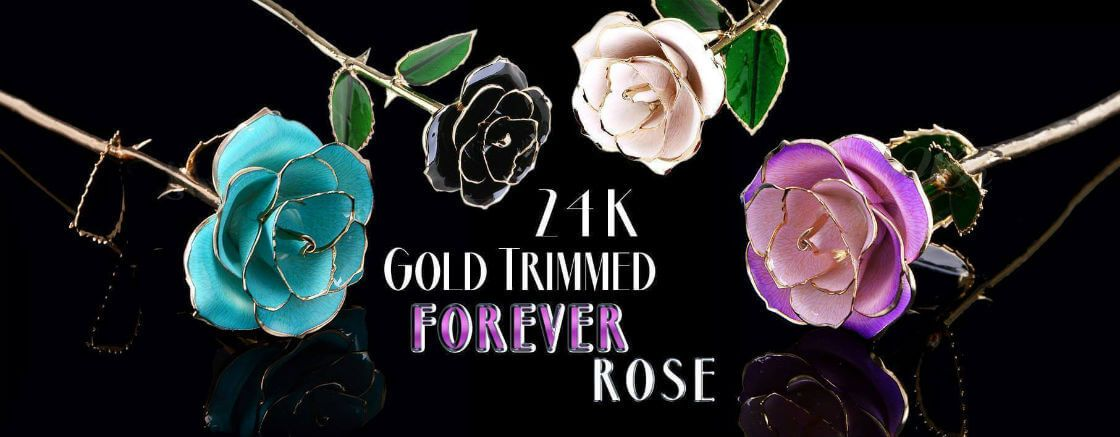 Gold Trimmed Forever Rose