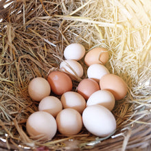 Load image into Gallery viewer, 1/2 DOZEN FREE RANGE LOCAL EGGS