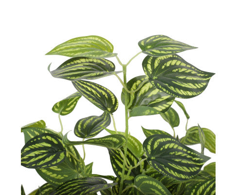 Leaves of Artificial Philodendron Plant