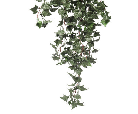 Hanging English Ivy Bush 80cm UV Resistant