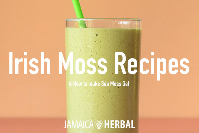 Delicious Sea Moss Recipes (Irish Moss) and How to Make Sea Moss Gel