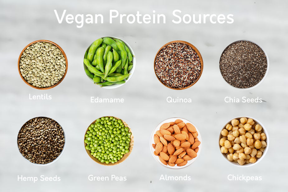 Why incorporate Vegan Protein Sources into your Diet?