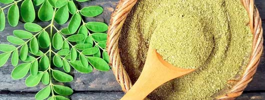 Moringa - blood sugar support, detox, essence of vitality