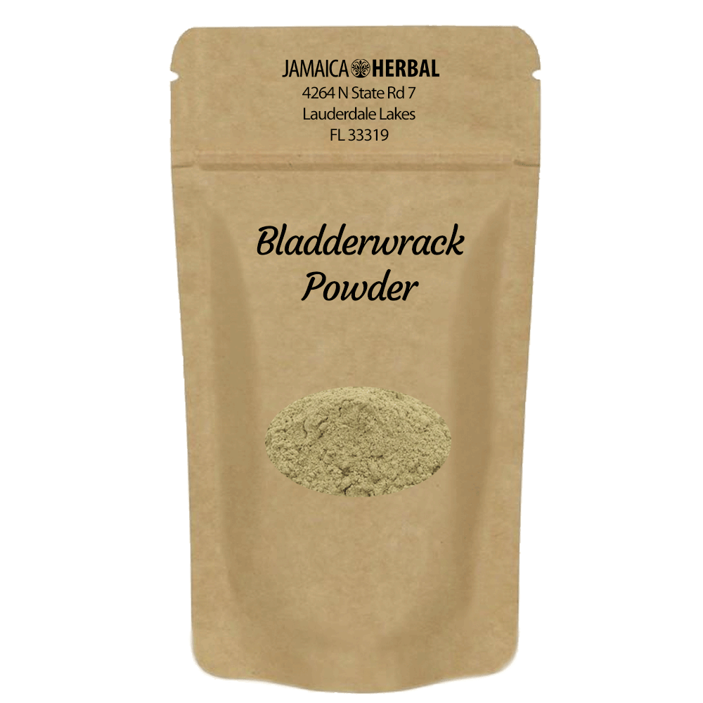 Bladderwrack Powder | Thyroid Support, Digestive Health, Arteriosclerosis Support