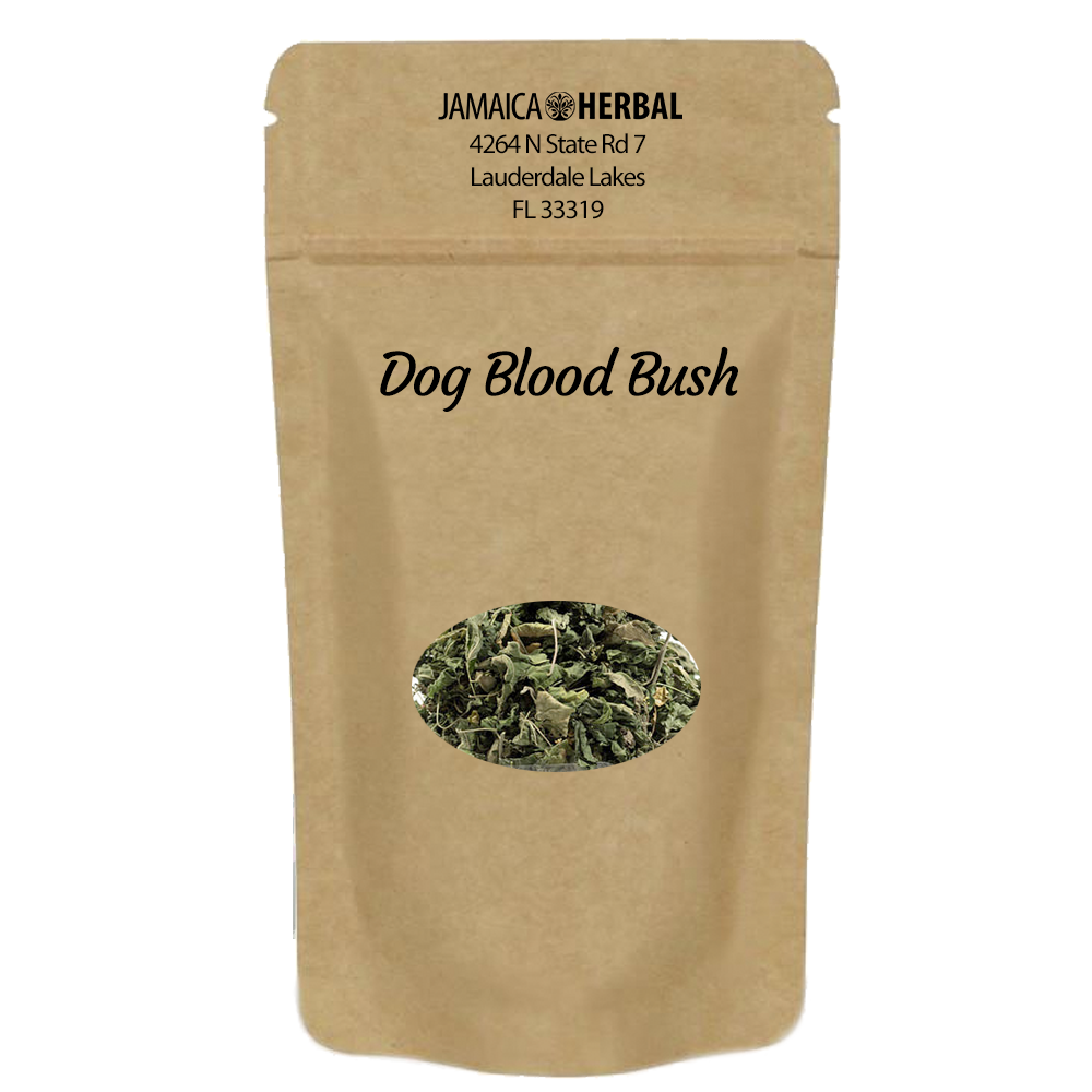 Dog Blood Bush