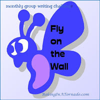 The Sky's Not Falling: Fly on the Wall