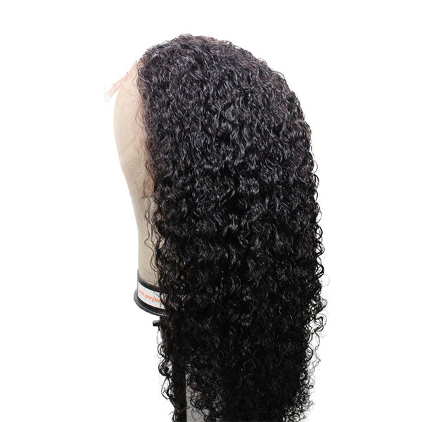 Spanish Curly 13x6 Lace Wig - 【PWH5301】 - pegasuswholesale