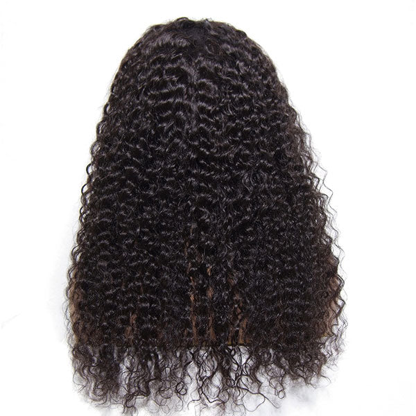 Indian curly 4x4 Closure Wig, HD Lace Wig - 【PWH6193】 - pegasuswholesale