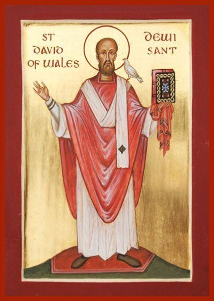 St. David Of Wales - Icons