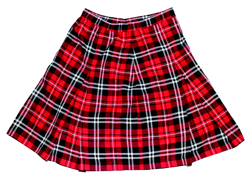 Junior's Plaid Skirt