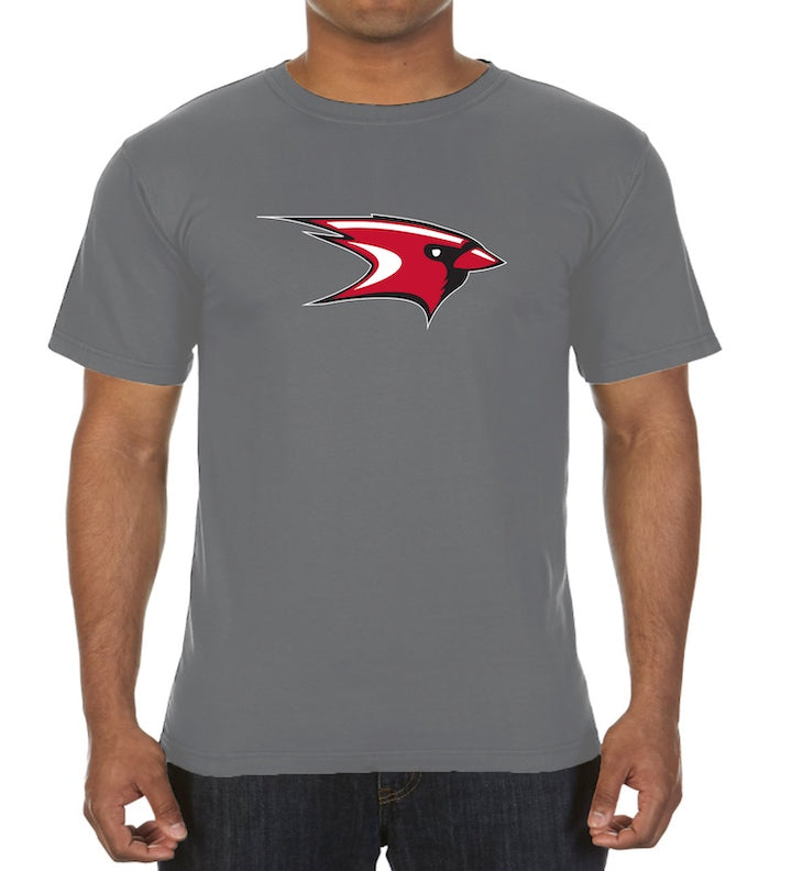Men's T-Shirt (2 Colors)