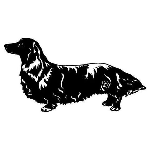 Long Hair Dachshund Auto Decal, 5.31 inches x 2.76 inches - DachshundFan