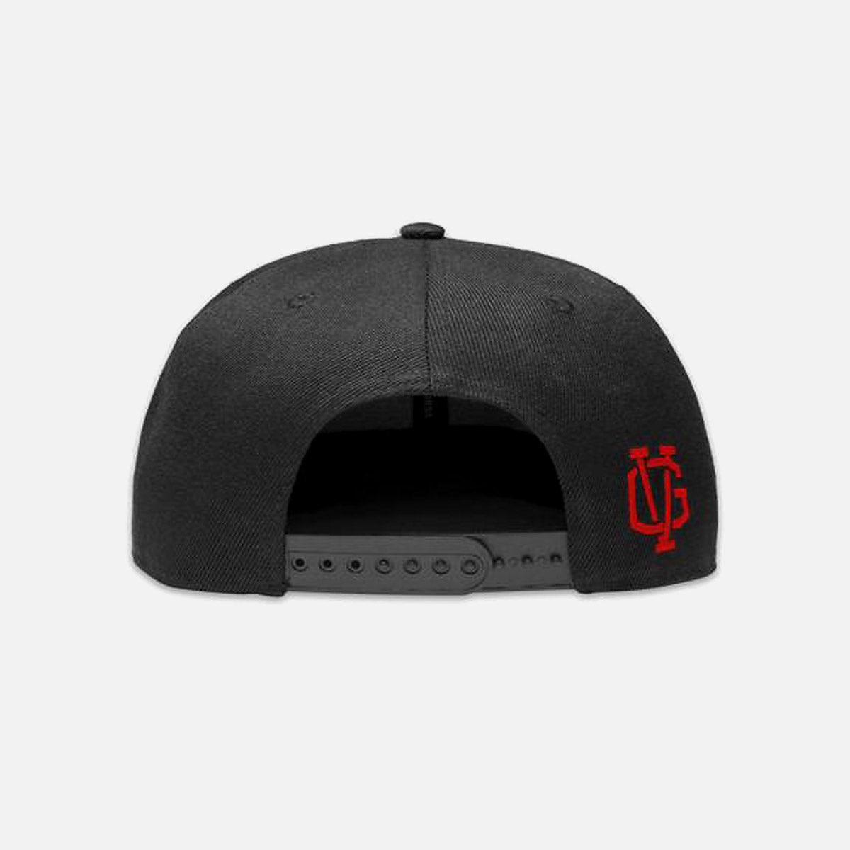 Violent Gentlemen Ivy Snapback Hat