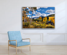 Mountain Fall Aspen Photo, High Quality Metal Wall Art Print, Ready to Hang Home or Office Picture Decor,  Zen Decor, Free Shipping in USA.