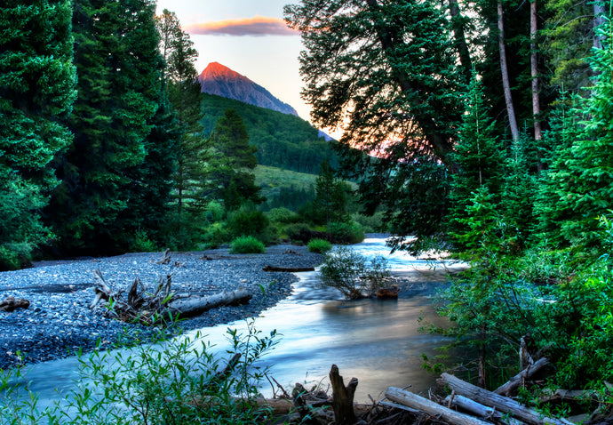 Mountain River Sunset Photography Print, Colorado Fly Fishing Creek Picture, Metal Wall Art for Home or Office Decor, Free Shipping USA