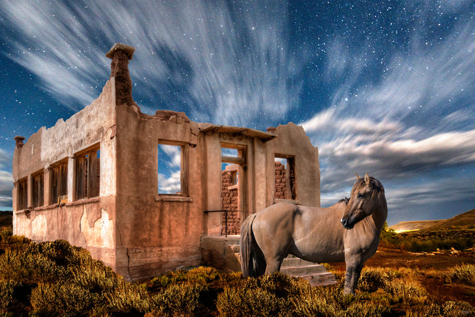 Surreal Colorado Horse Photo Collage, High Quality Metal Wall Art Print, Ready to Hang Home or Office Picture Decor, Free Shipping in USA!