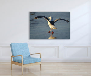 Ocean Beach Seagull Photo, High Quality Metal Wall Art Print, Ready to Hang Home or Office Picture Decor,  Zen Decor, Free Shipping in USA.