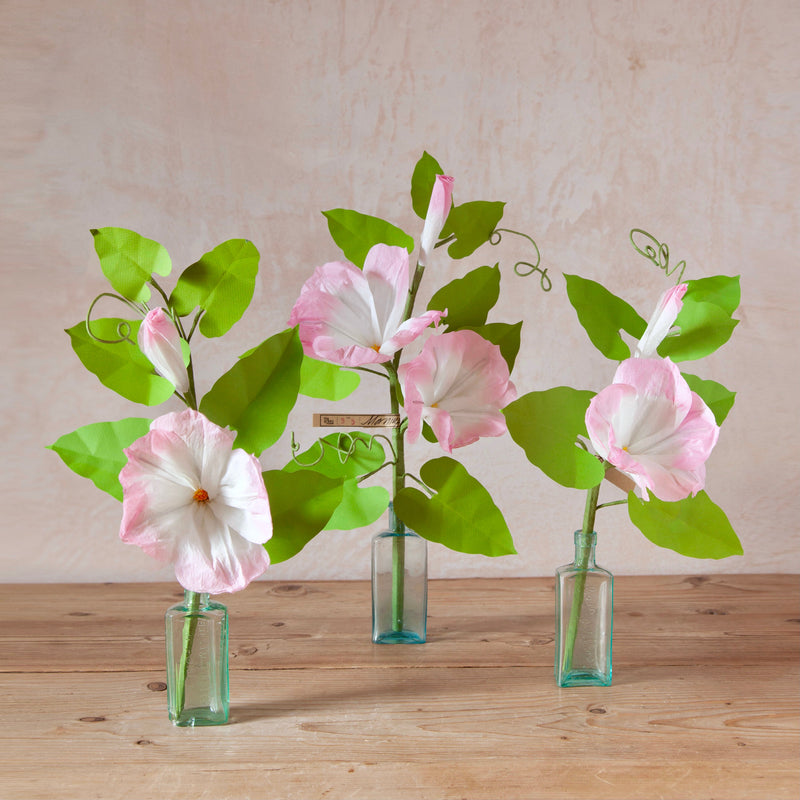 Morning Glory Paper Flower Stems