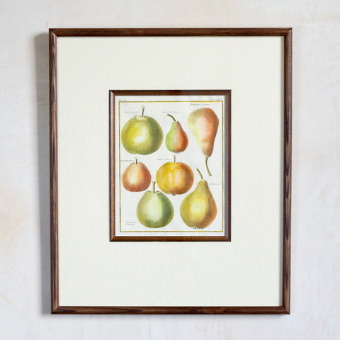 Custom-Framed 18th Century Fruit Print, Pear