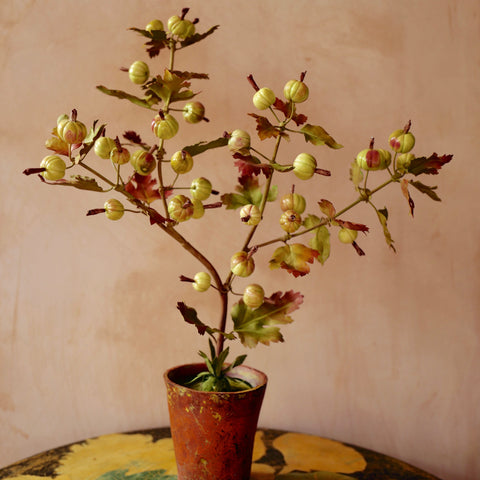 Gooseberries Flower Sculpture