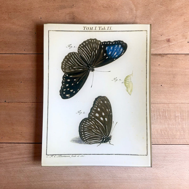 "Butterflies, 8x10.5"" Rectangular Tray"