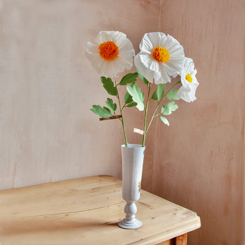 Poppy Matilija Paper Flower Stems
