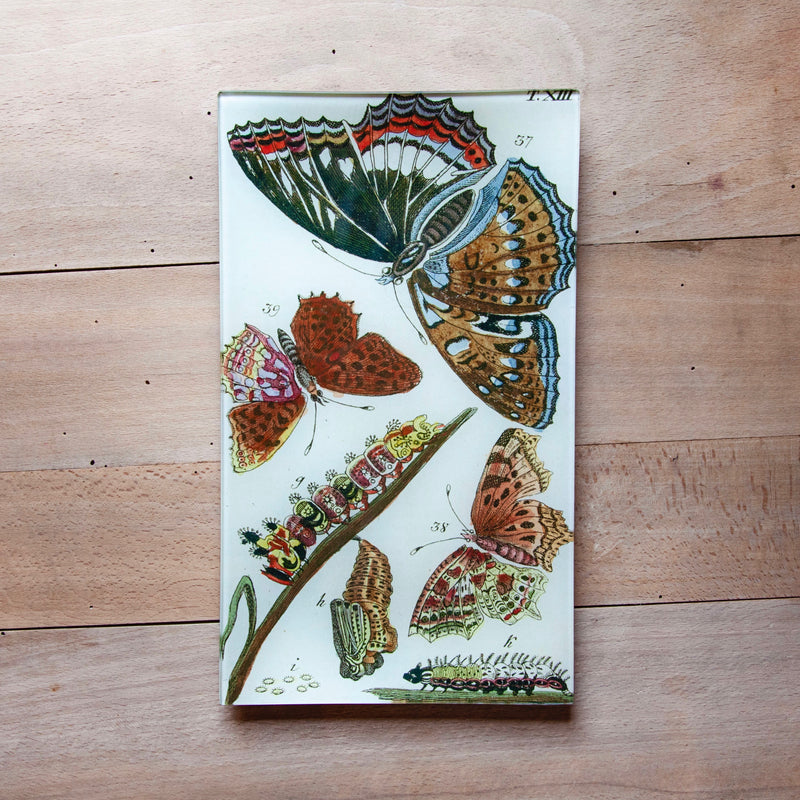 "Butterflies, 7x11.5"" Rectangular Tray"