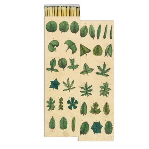 Simple Leaves, Match Box