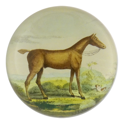 Brown Horse - Dome Paperweight