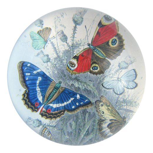 Butterflies - Dome Paperweight