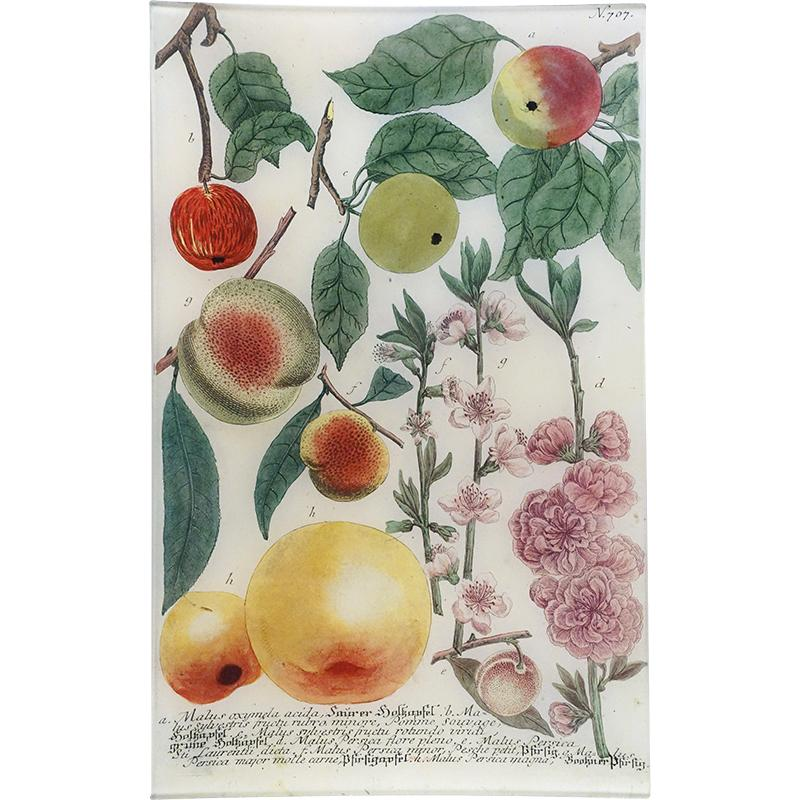 "N. 707 Colorful Apples, 10 x 16"" Rectangular Tray"