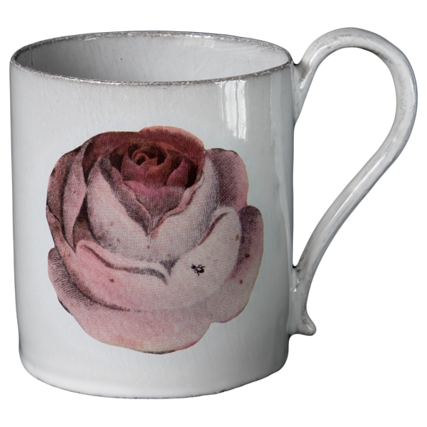 Rose and Insect Mug